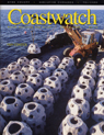 CWSpr2002.jpg - Artificial Reefs:  From Shipwrecks to Reef BallsNorth Carolina has one of the premier state-managed artificial reef programs in the country. Pam Smith takes us along on a recent deployment of reef balls by the N.C. Division of Marine Fisheries.