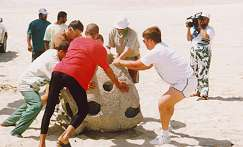new10.jpg - Extra help is given by some American military personnel who dive with the club members in their off hours while the club's press department films the event for the media. The Reef Balls are then rolled into the sea by hand, since the sand is too soft to get the truck down to the waters edge.