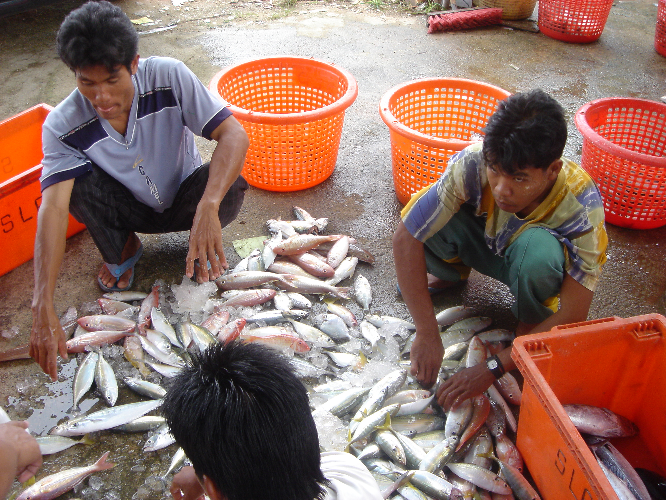 2005oct15_fishingvillage_028.jpg
