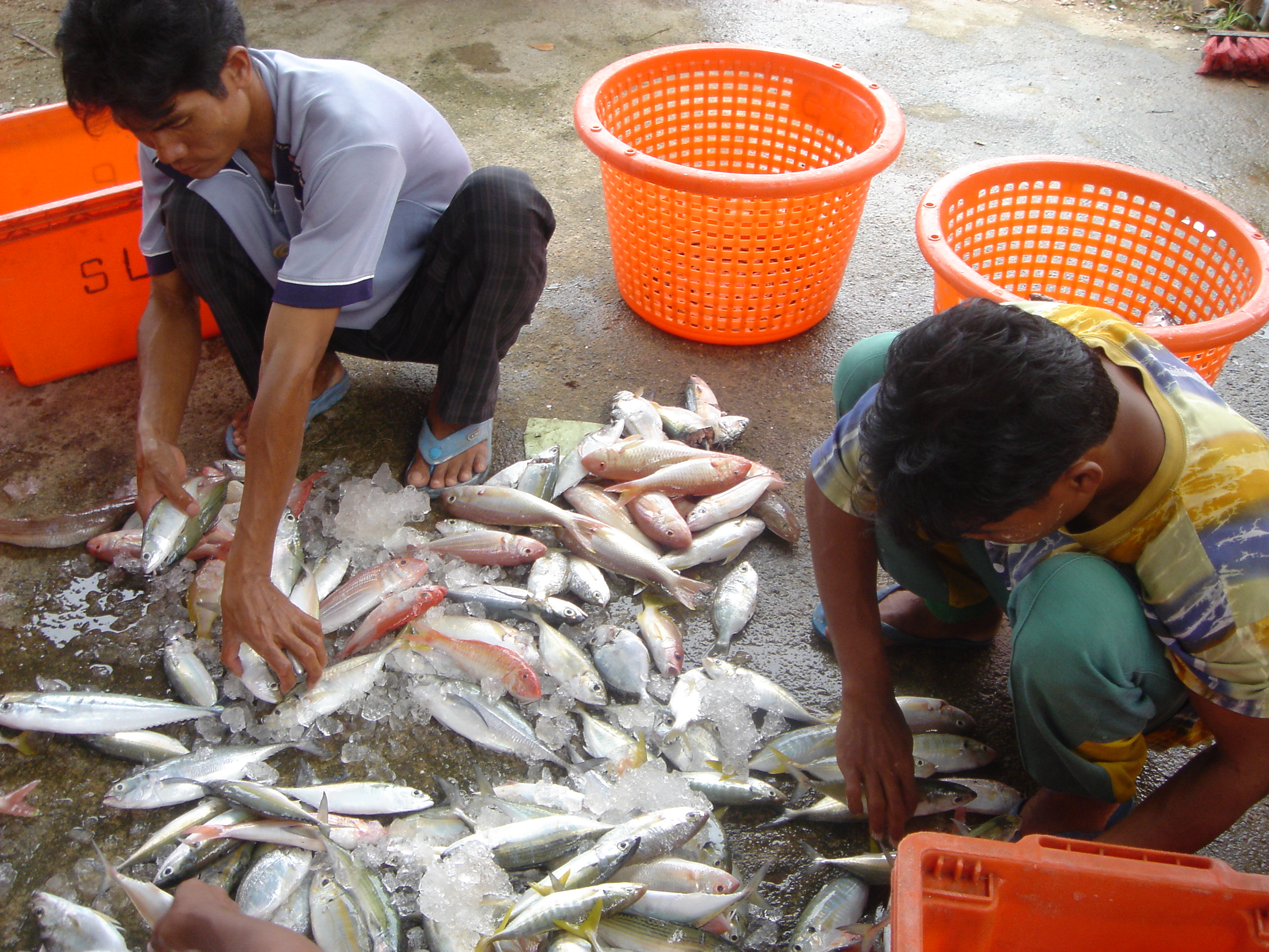 2005oct15_fishingvillage_029.jpg