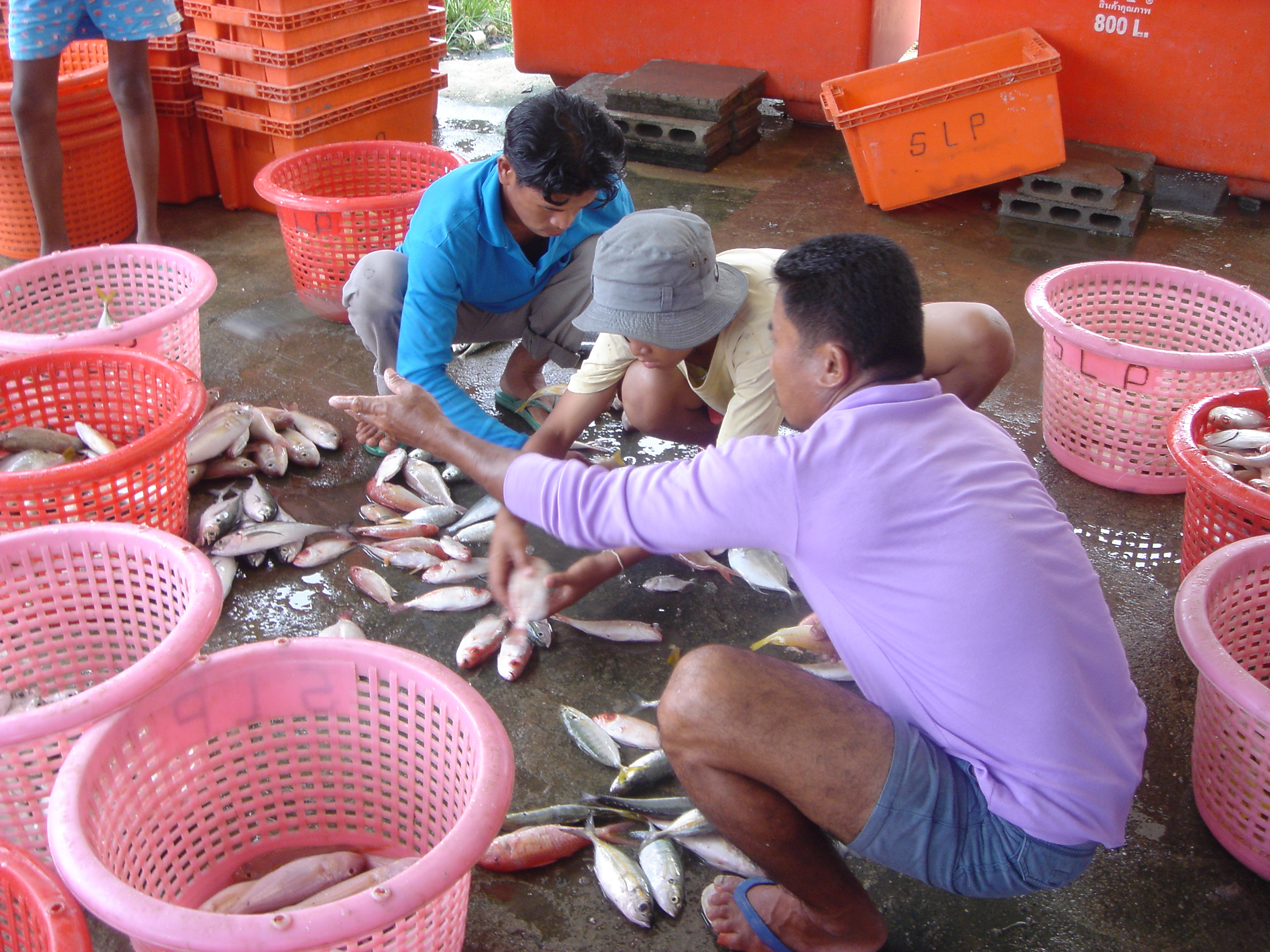 2005oct15_fishingvillage_030.jpg