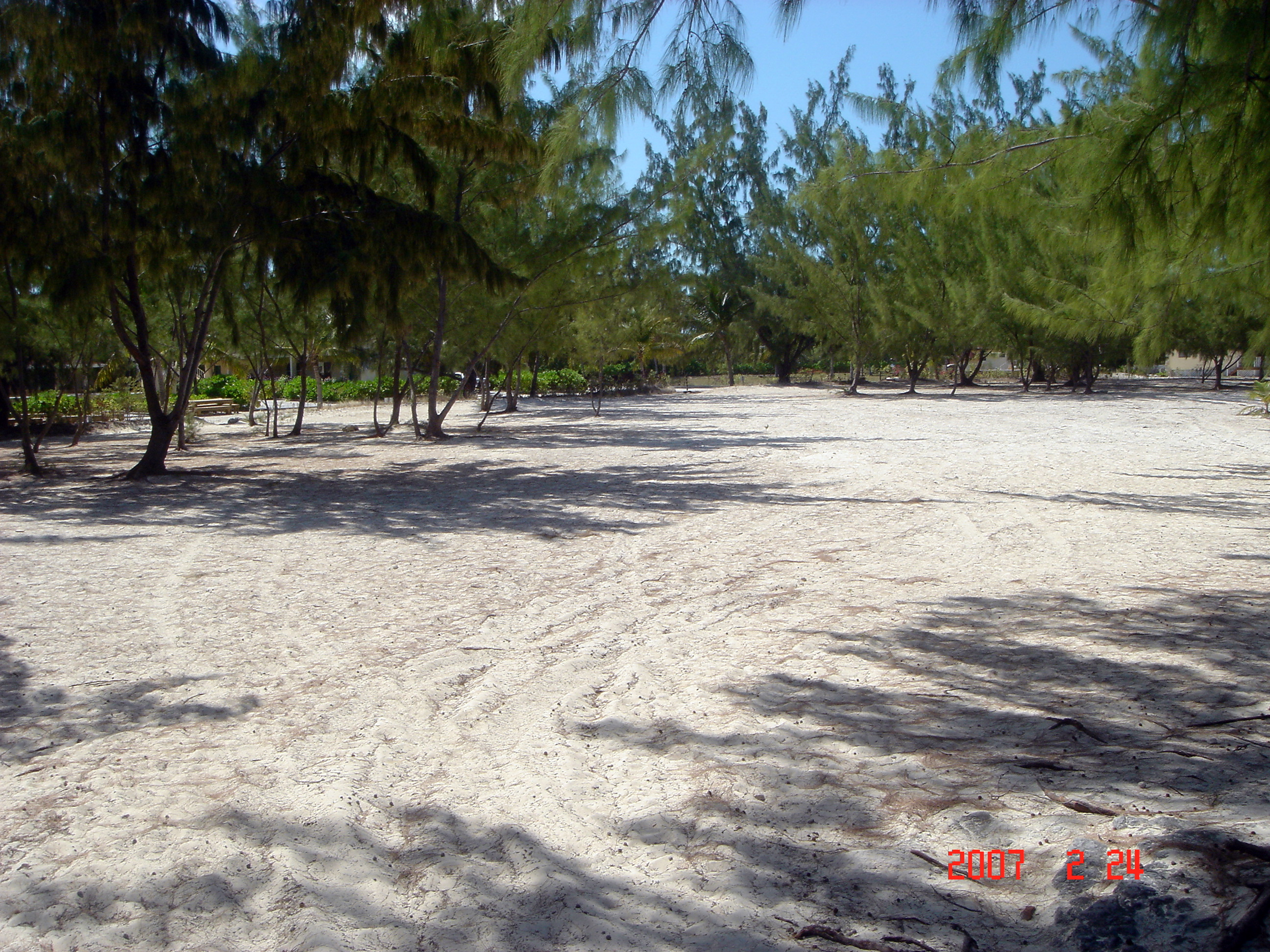 Beaches2007Feb24-14.jpg