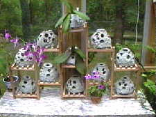 Reef Ball Models used As Orchid Pots